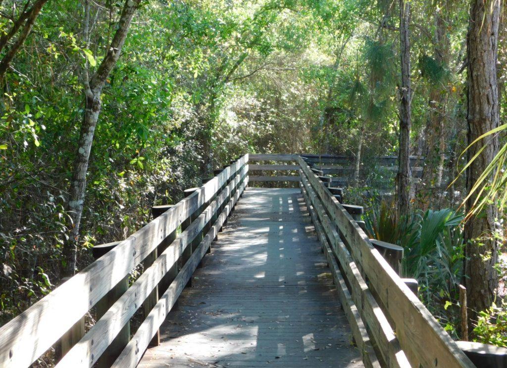Brücke in den Everglades