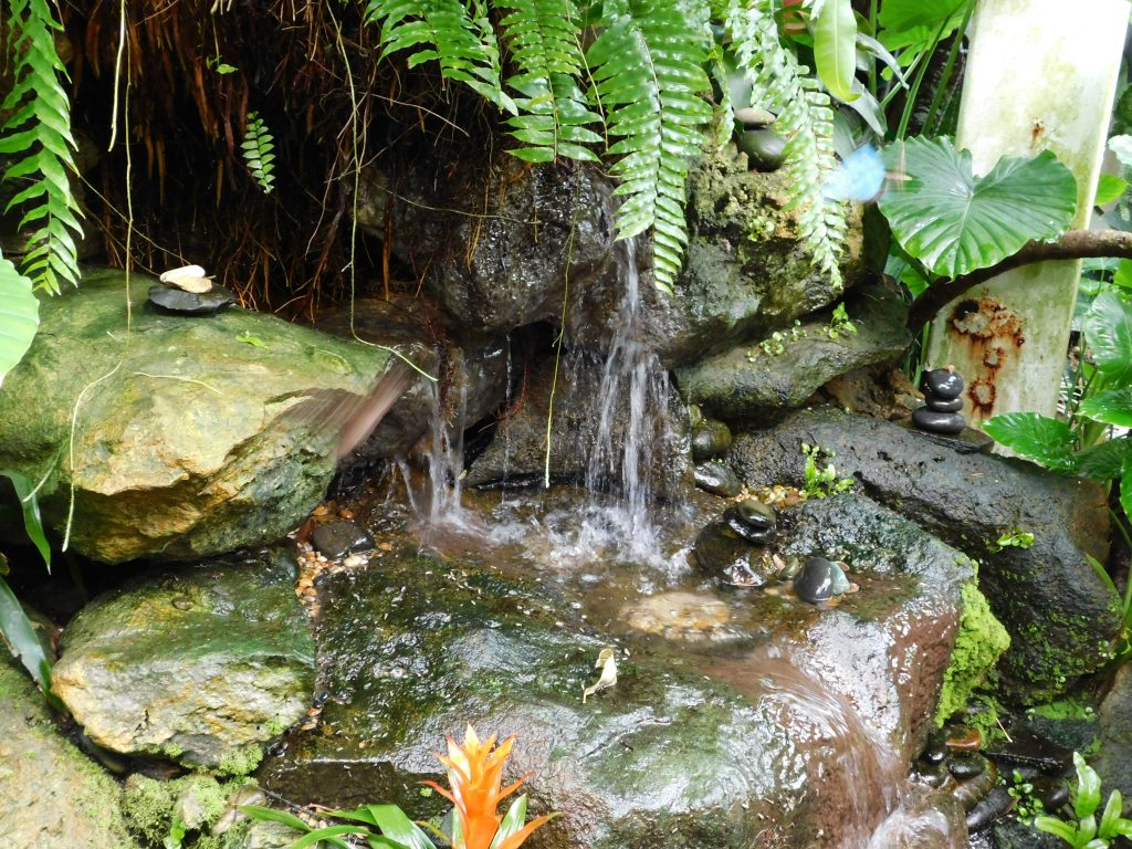 Wasserbassin in Nationalpark Everglades in Florida