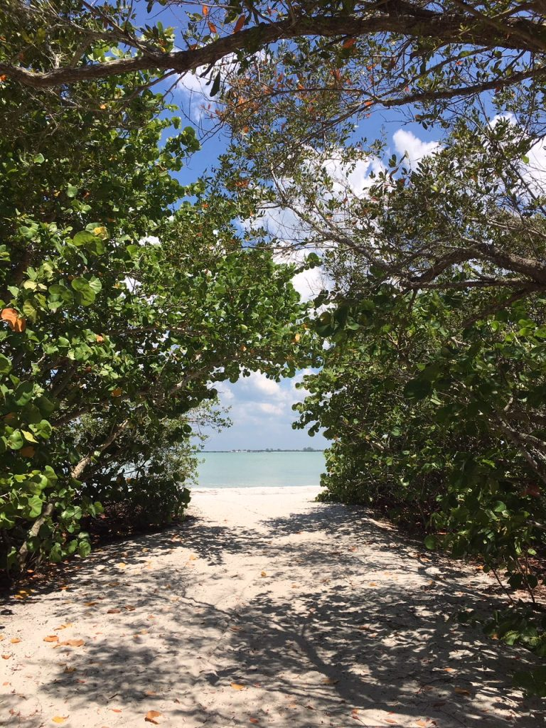Weg zum Bowman Beach auf Sanibel Island