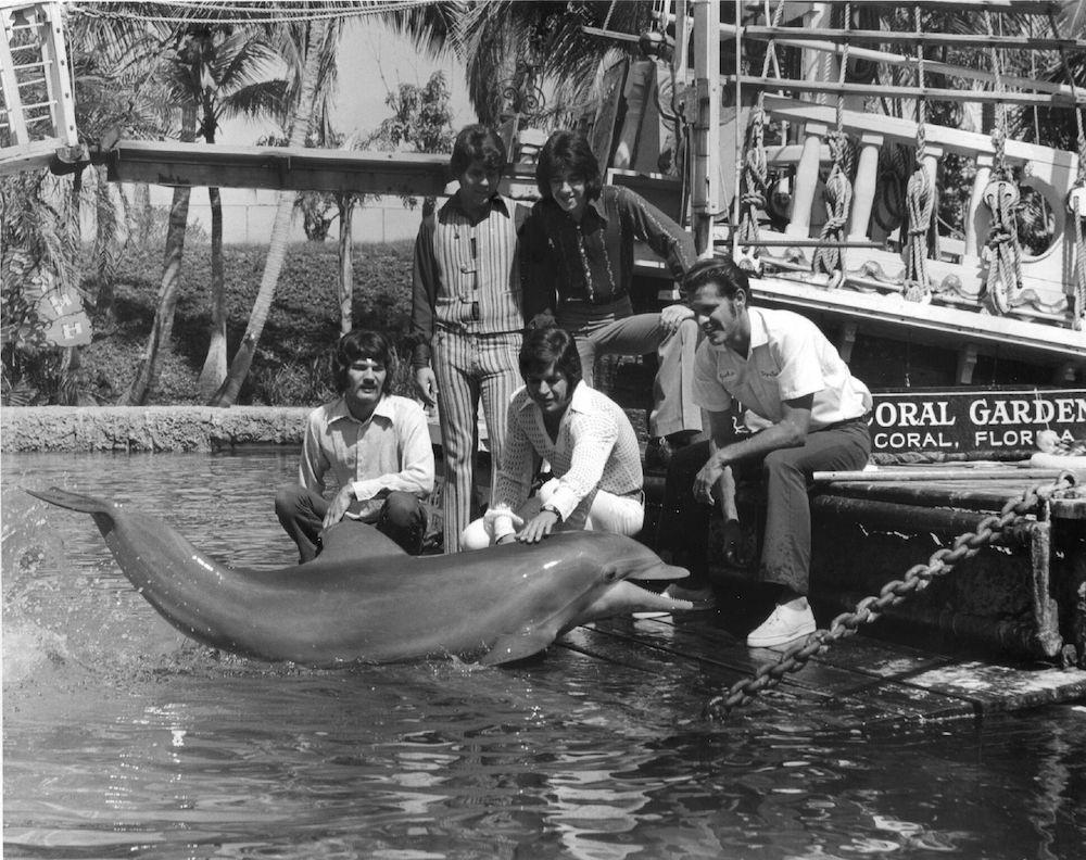 erste Besucher in Cape Coral